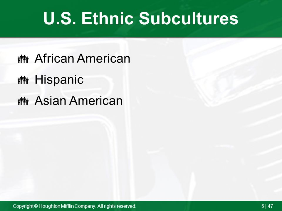 U.S. Ethnic Subcultures African American Hispanic Asian American