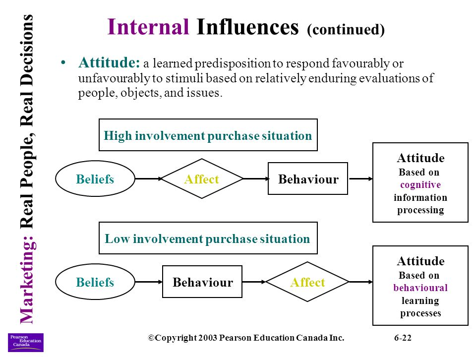 internal influence Internal influences – personality some marketers believe we choose products that express our personalities personality is defined as the thoughts, emotions.