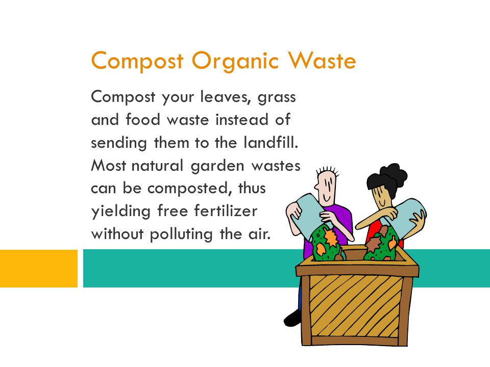 Compost Organic Waste