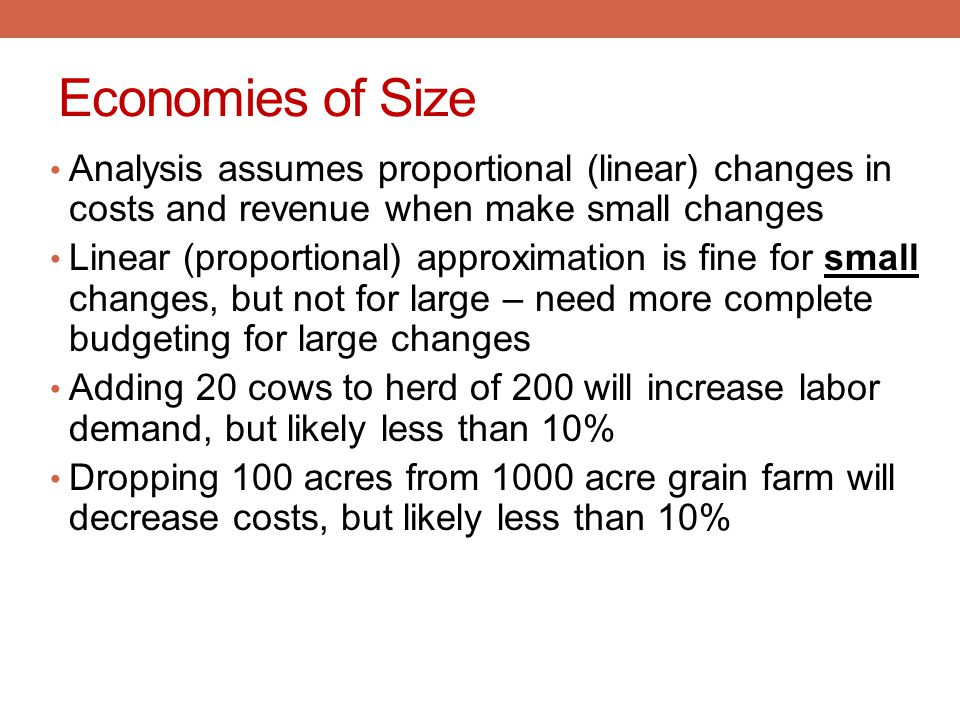 Economies of Size Analysis assumes proportional (linear) changes in costs and revenue when make small changes.