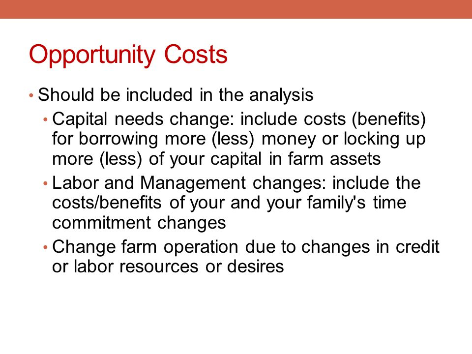 Opportunity Costs Should be included in the analysis