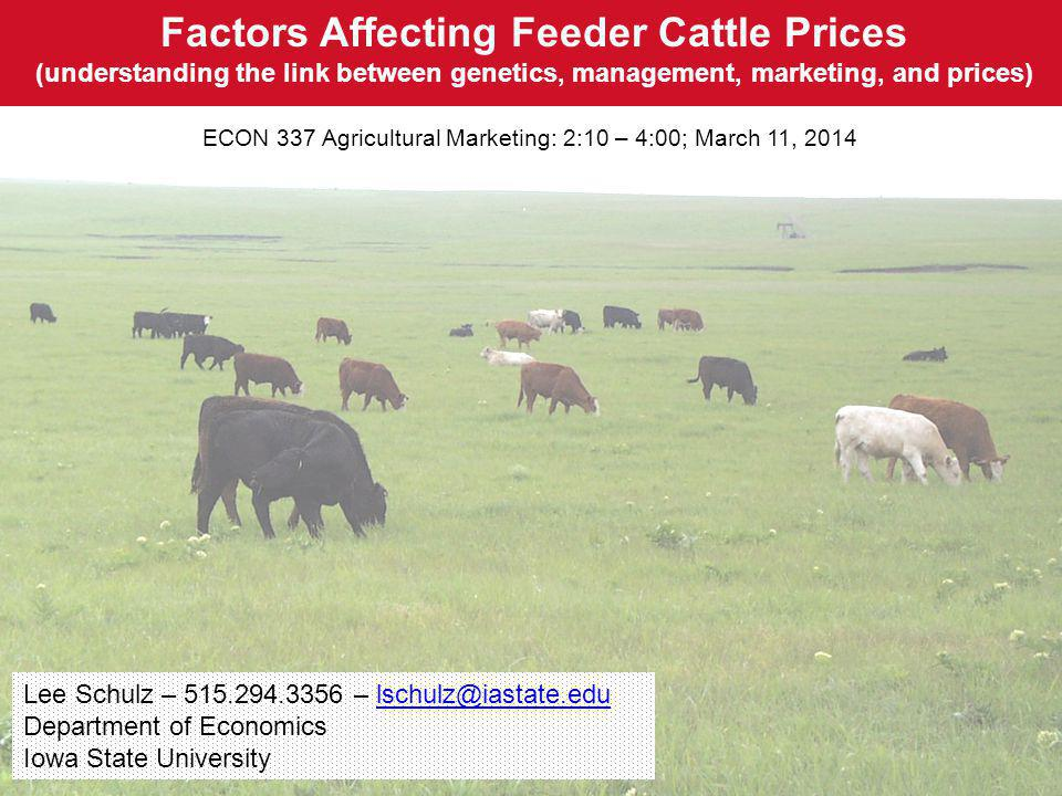 Factors Affecting Feeder Cattle Prices