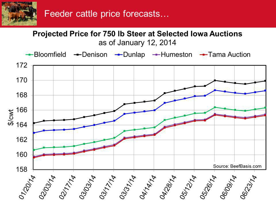 Feeder cattle price forecasts…