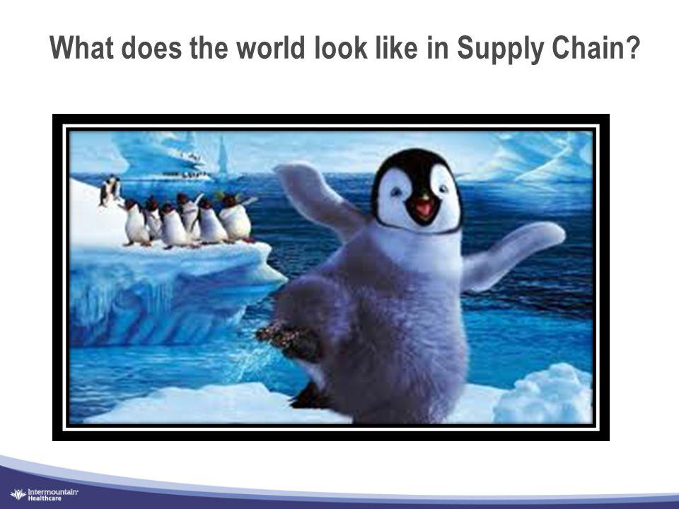 What does the world look like in Supply Chain