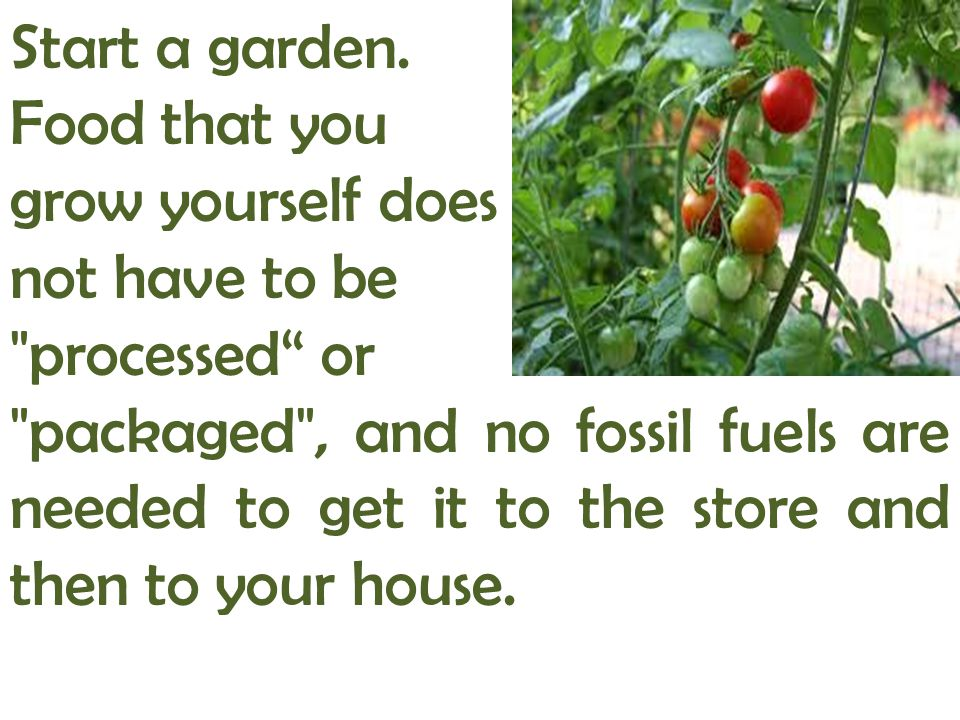 Start a garden. Food that you. grow yourself does. not have to be. processed or.