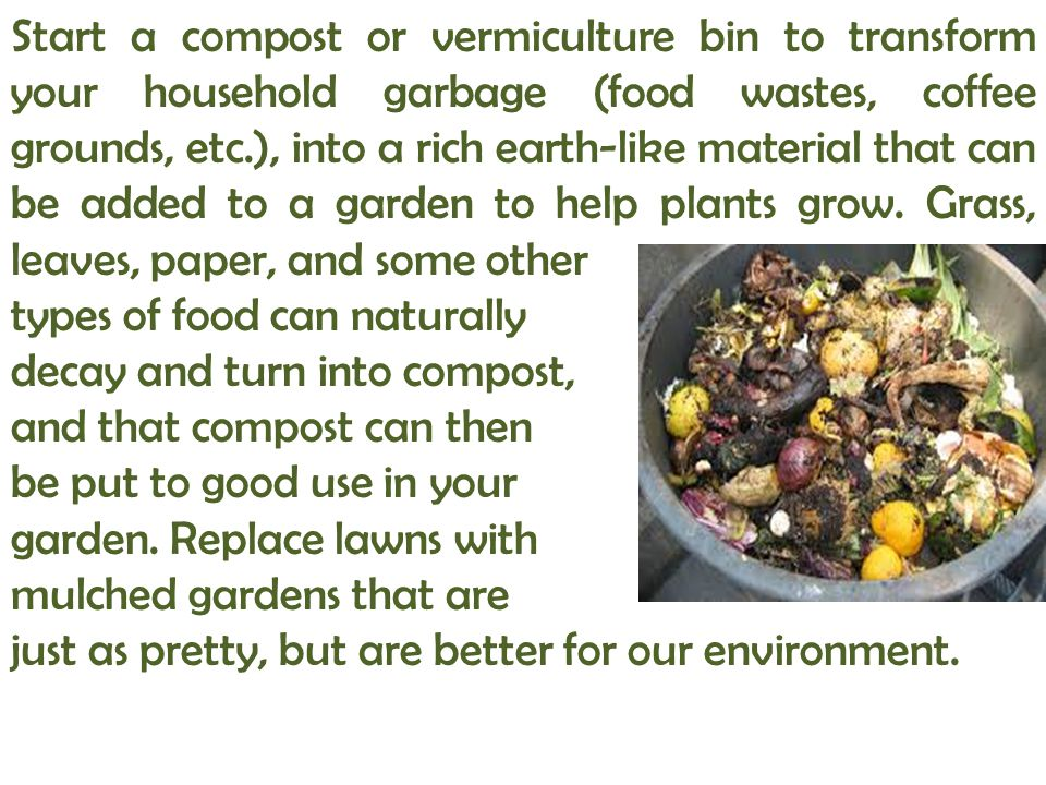 Start a compost or vermiculture bin to transform your household garbage (food wastes, coffee grounds, etc.), into a rich earth-like material that can be added to a garden to help plants grow. Grass, leaves, paper, and some other