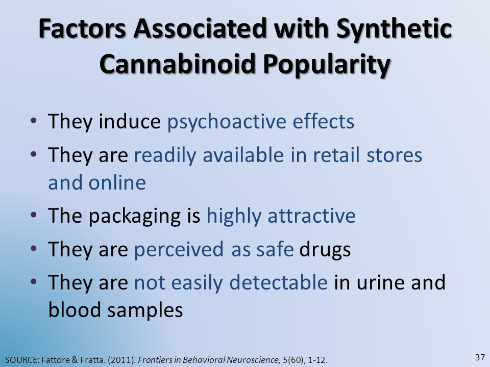 Factors Associated with Synthetic Cannabinoid Popularity