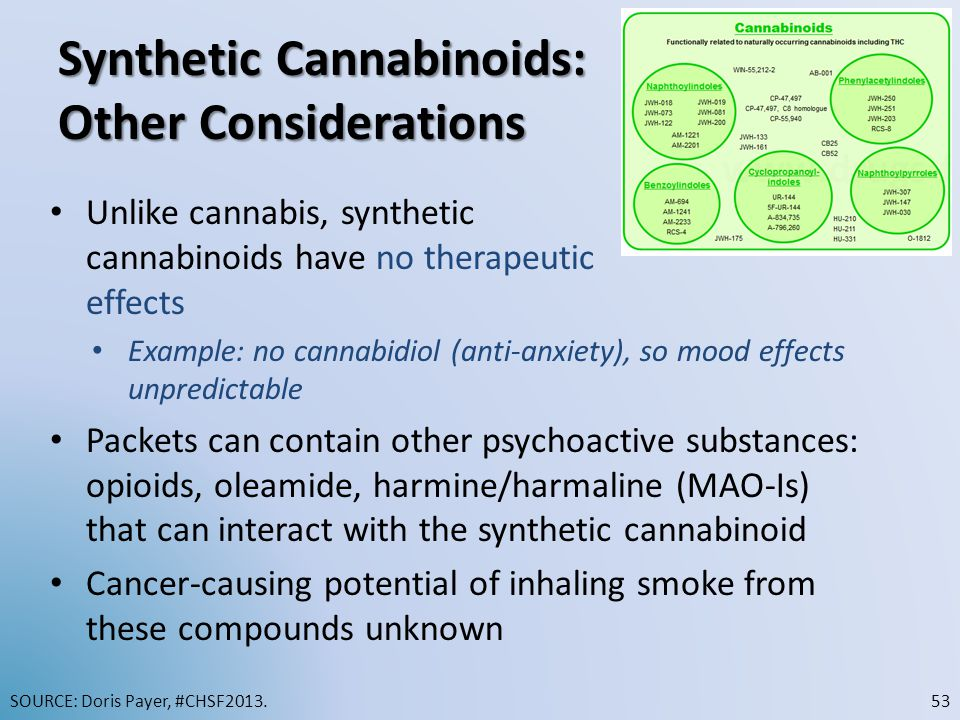 Synthetic Cannabinoids: Other Considerations