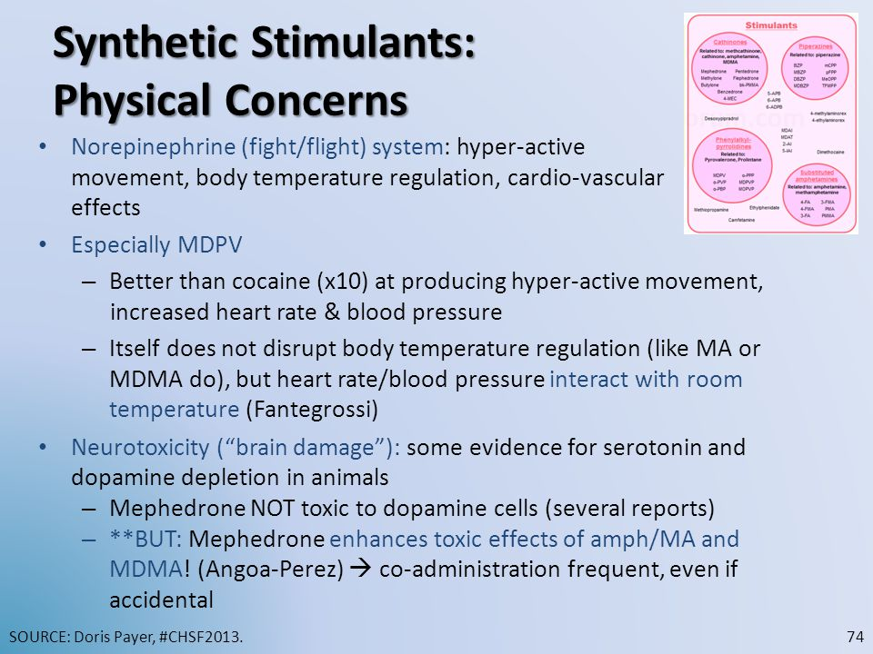 Synthetic Stimulants: Physical Concerns