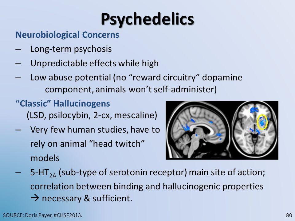 Psychedelics Neurobiological Concerns Long-term psychosis