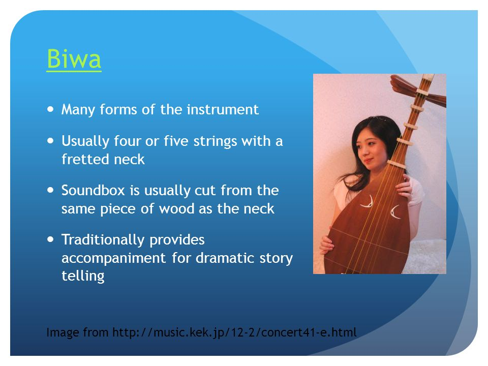 Biwa Many forms of the instrument