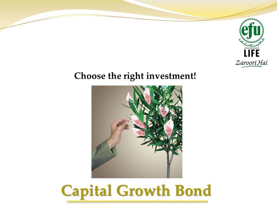Choose the right investment!