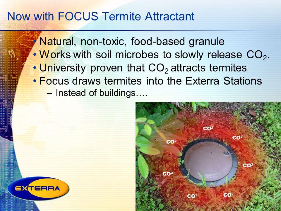 Now with FOCUS Termite Attractant