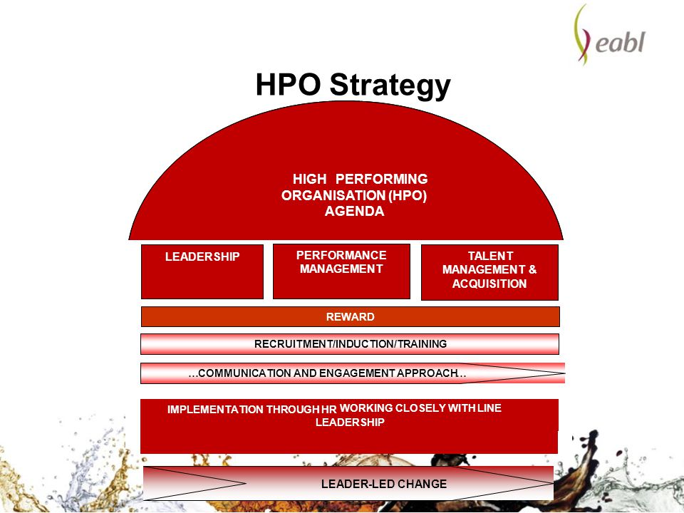 HPO Strategy HIGH PERFORMING ORGANISATION (HPO) AGENDA LEADERSHIP