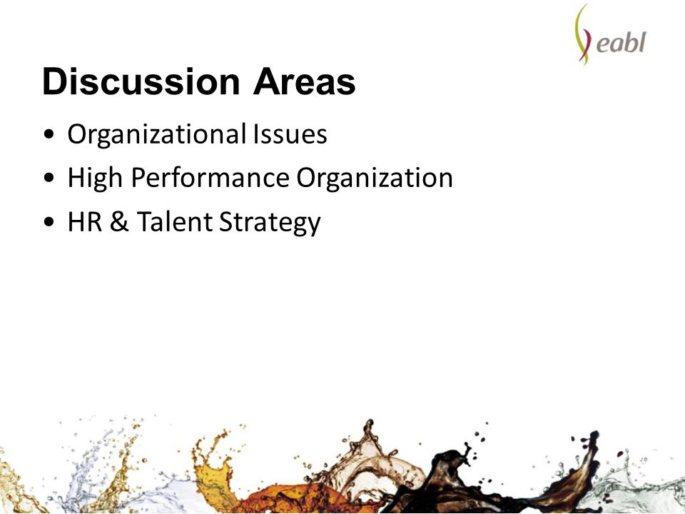Discussion Areas Organizational Issues High Performance Organization
