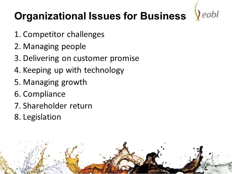 Organizational Issues for Business