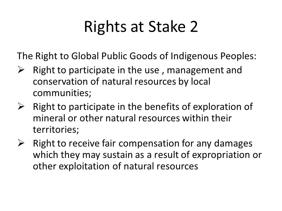 Rights at Stake 2 The Right to Global Public Goods of Indigenous Peoples: