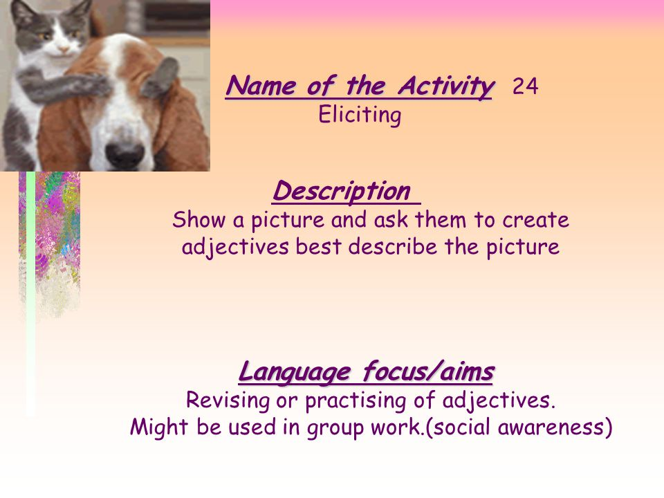 Name of the Activity 24 Description Language focus/aims Eliciting