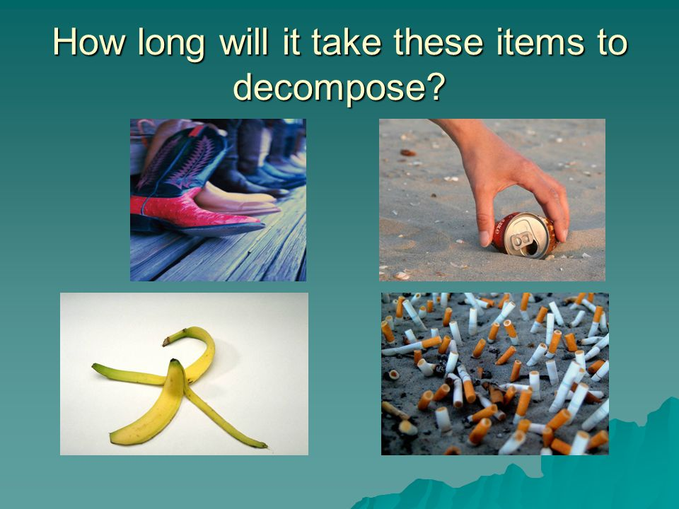How long will it take these items to decompose