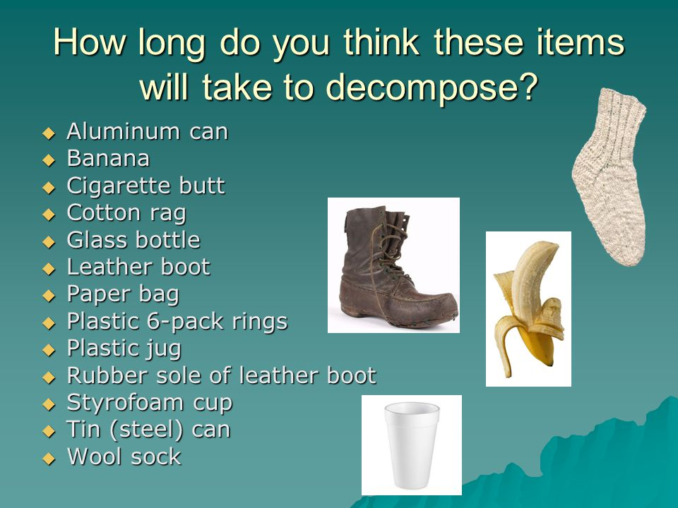 How Long To Decompose Plastic  Pack Rings