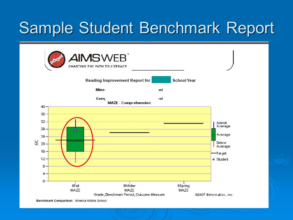 Sample Student Benchmark Report