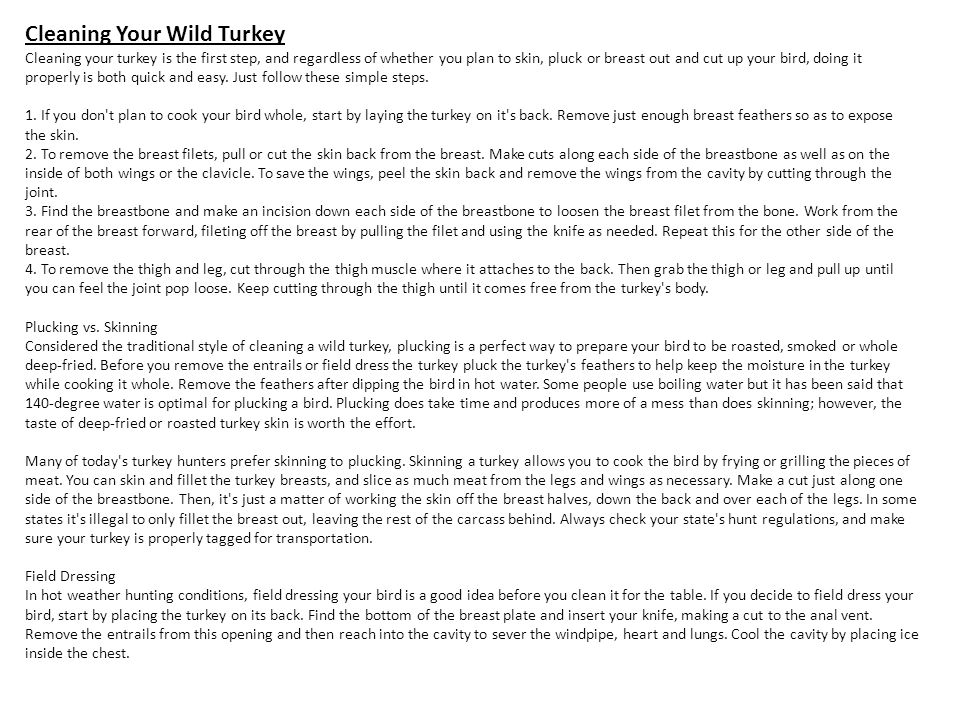 Cleaning Your Wild Turkey