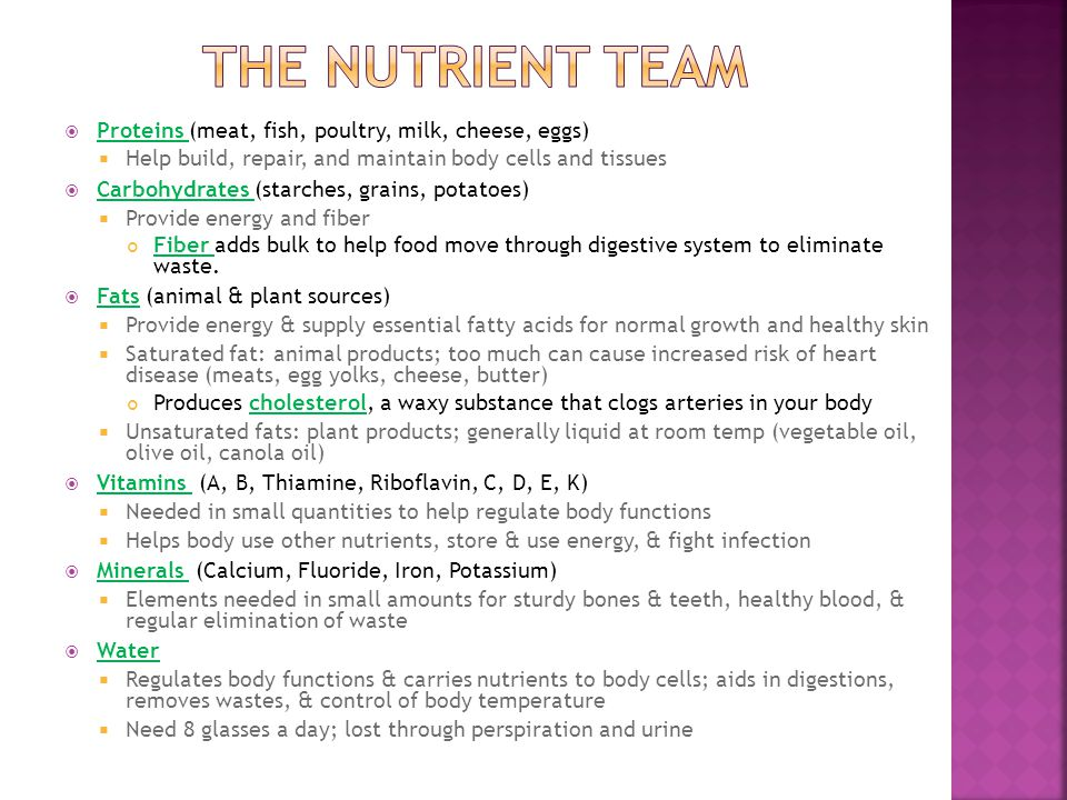 The nutrient team Proteins (meat, fish, poultry, milk, cheese, eggs)