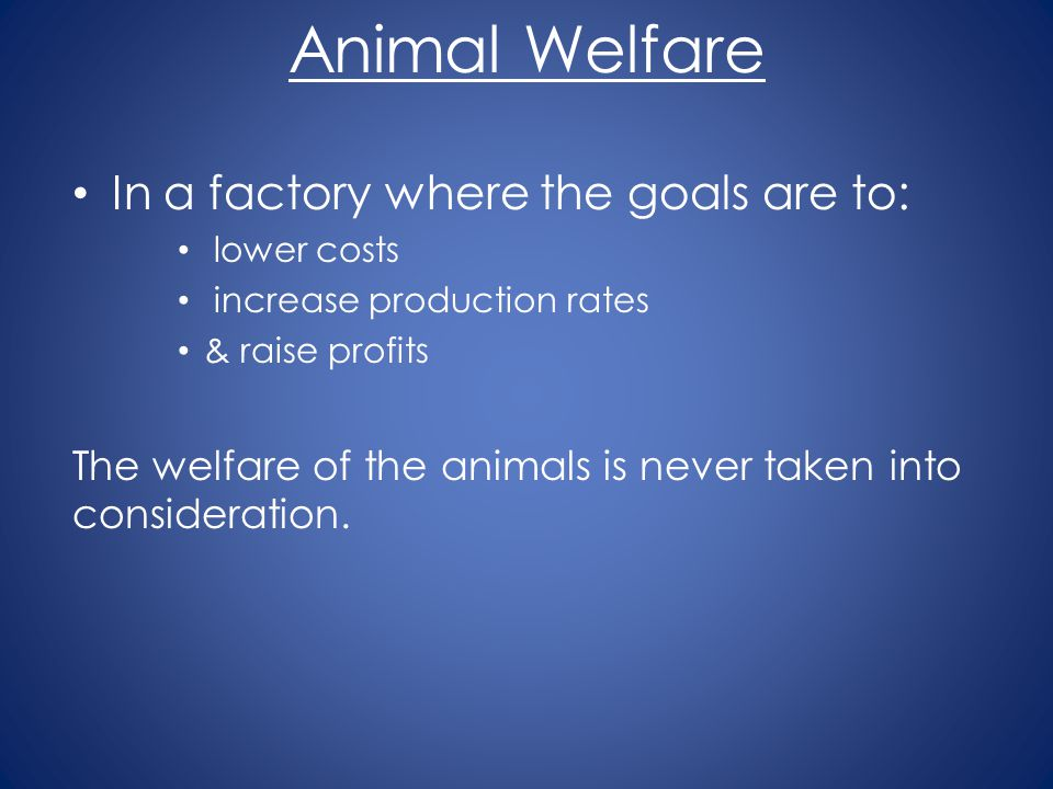 Animal Welfare In a factory where the goals are to: