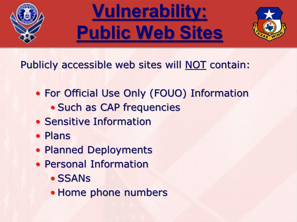 Vulnerability: Public Web Sites