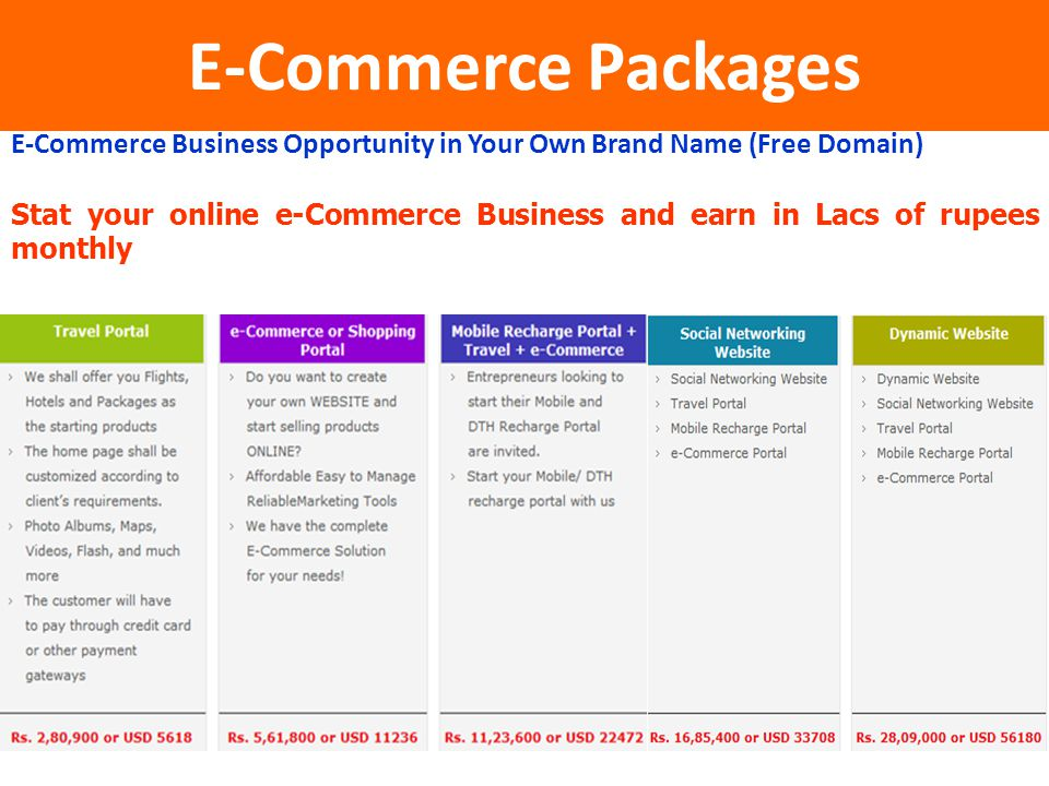 E-Commerce Packages E-Commerce Business Opportunity in Your Own Brand Name (Free Domain)