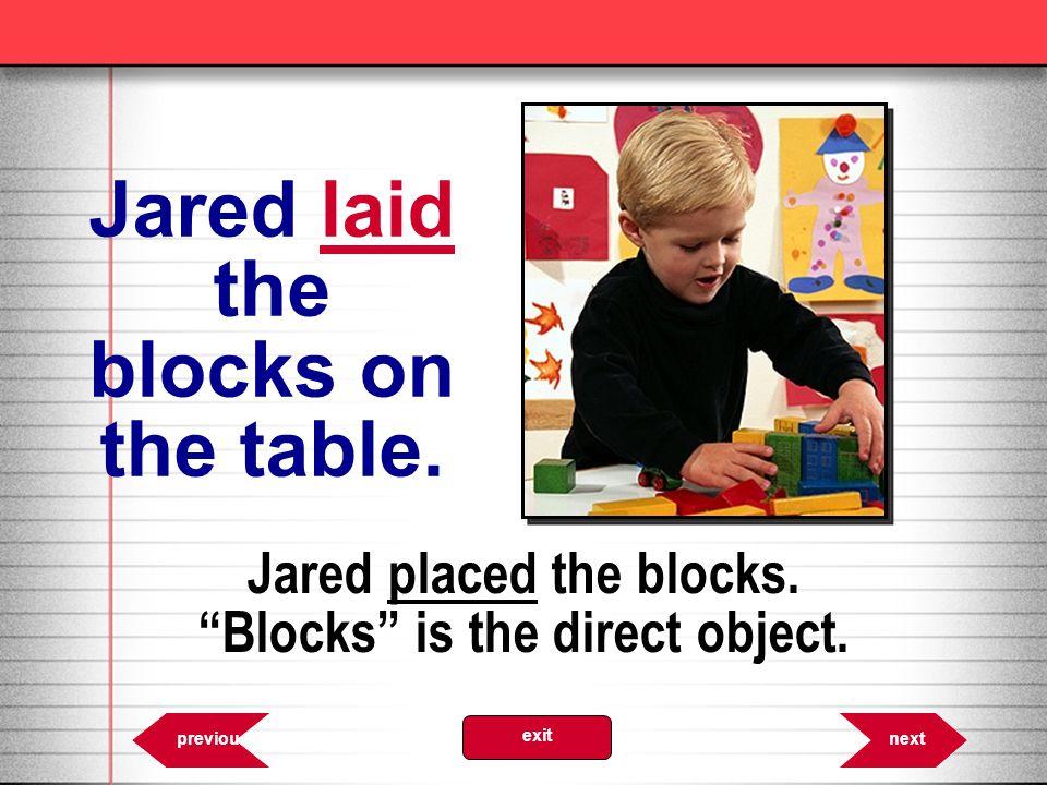 Jared laid the blocks on the table.