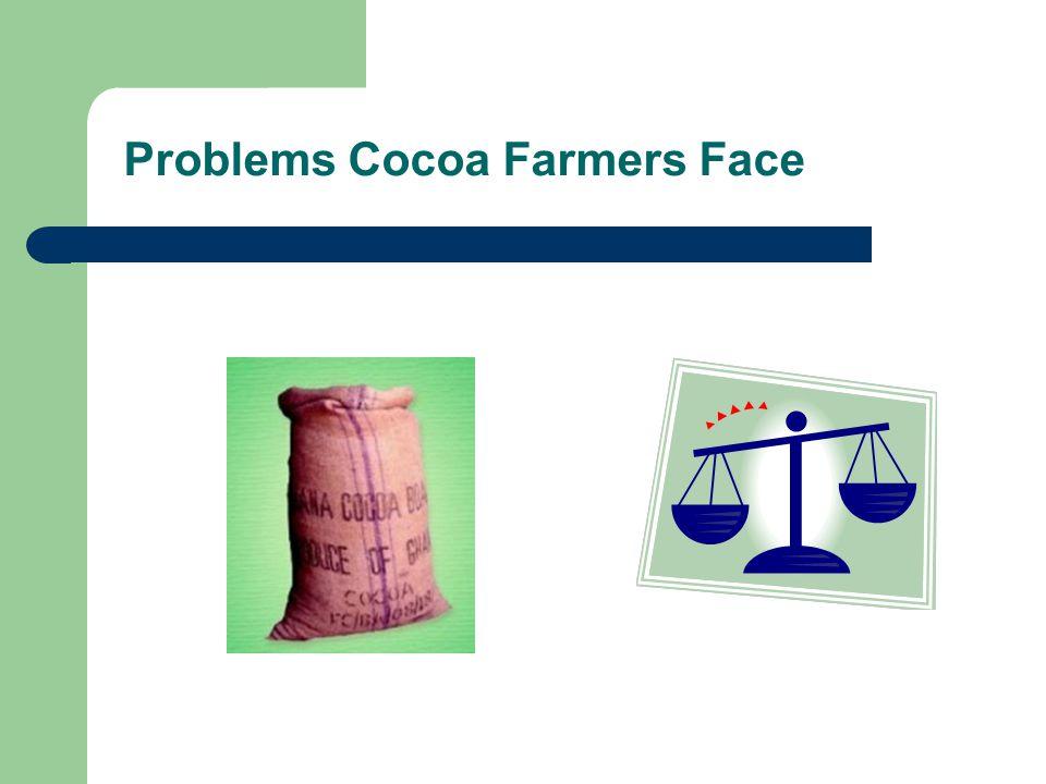 Problems Cocoa Farmers Face