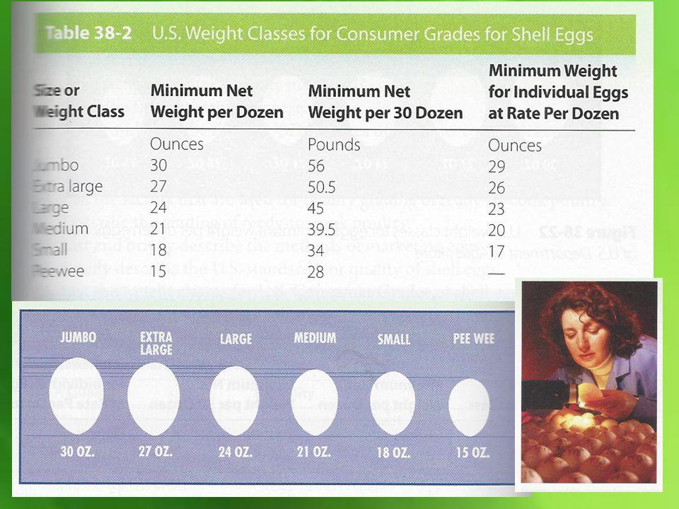 Egg Grades