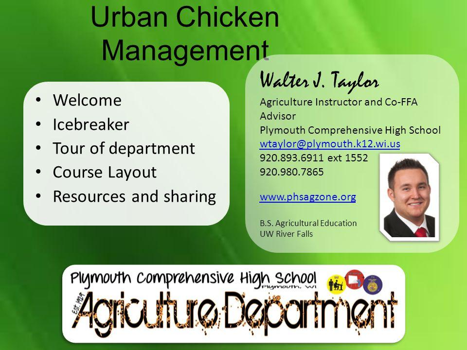 Urban Chicken Management