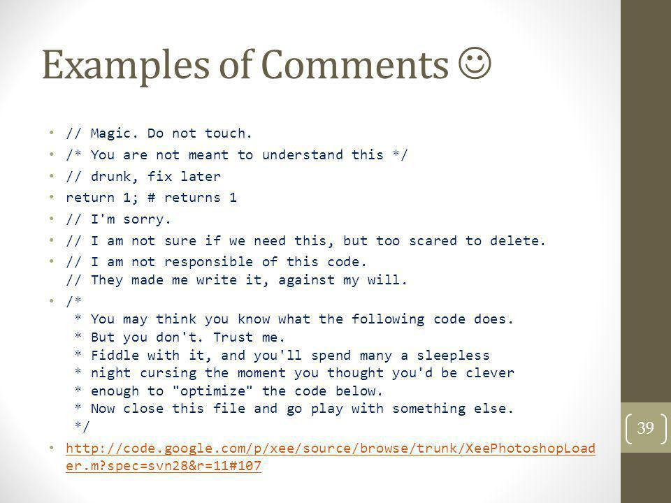 Examples of Comments  // Magic. Do not touch.