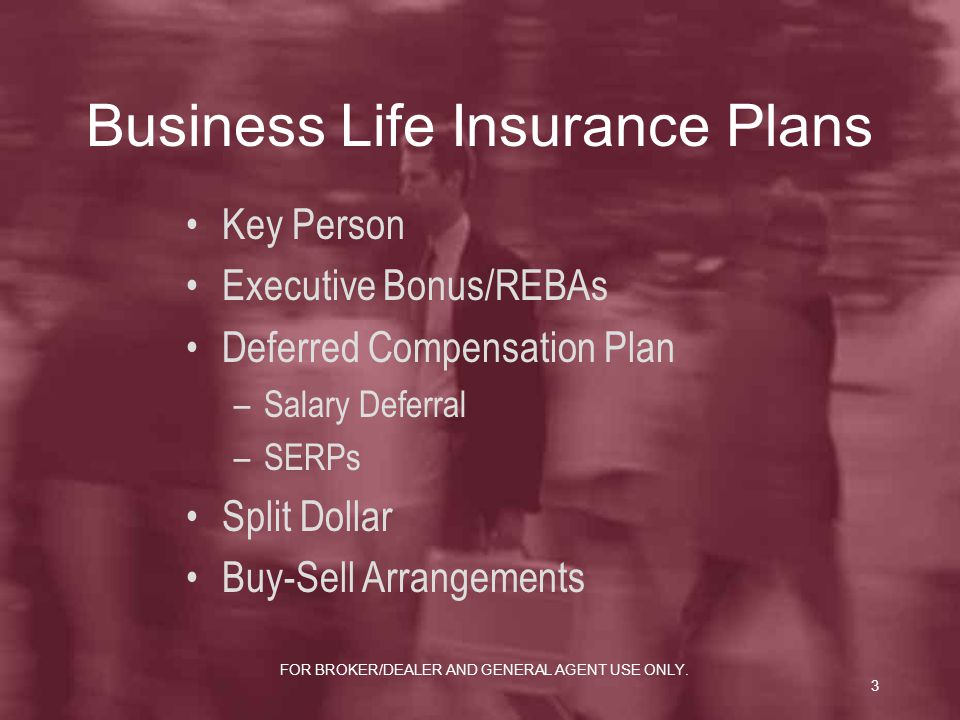 Business Life Insurance Plans