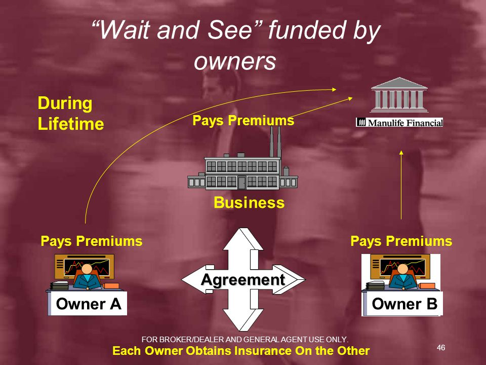 Wait and See funded by owners
