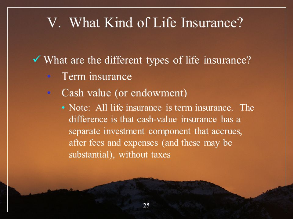 V. What Kind of Life Insurance