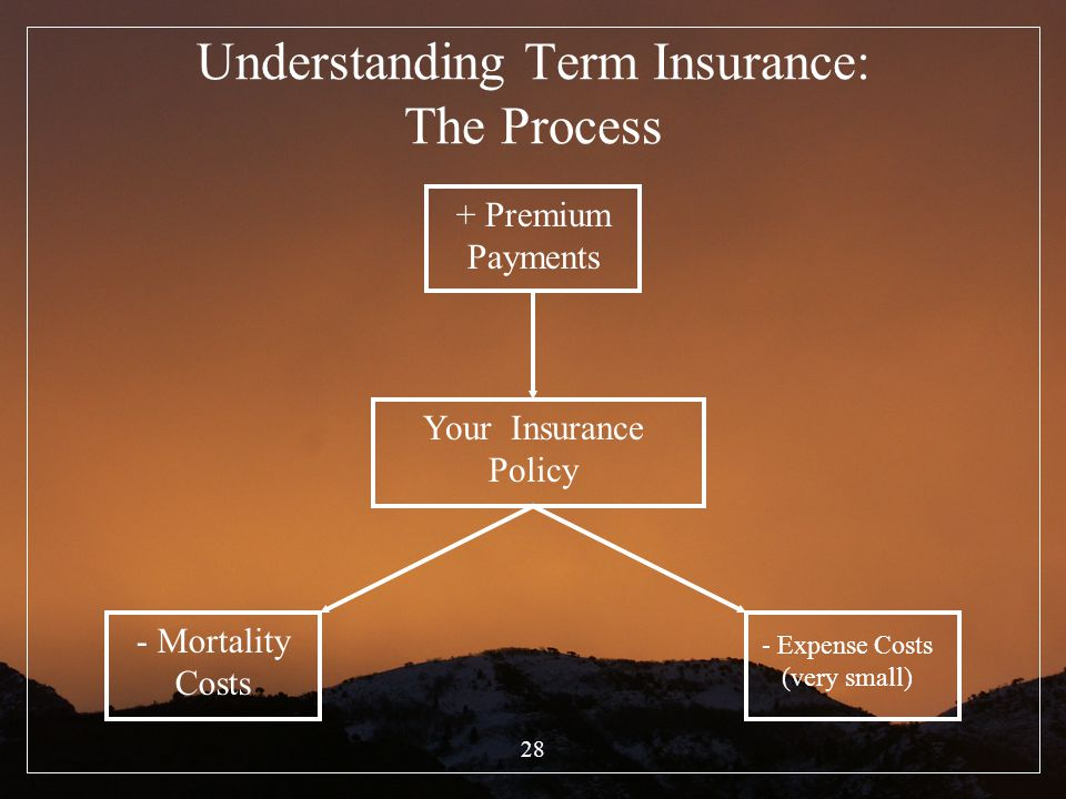 Understanding Term Insurance: The Process