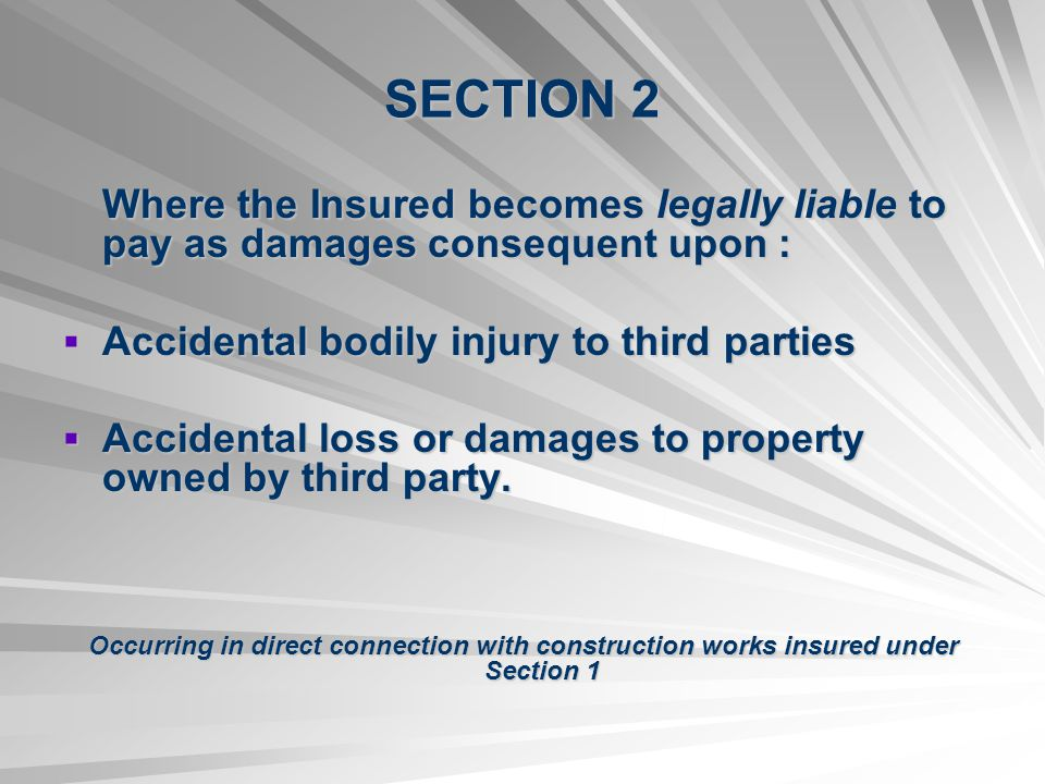 SECTION 2 Accidental bodily injury to third parties