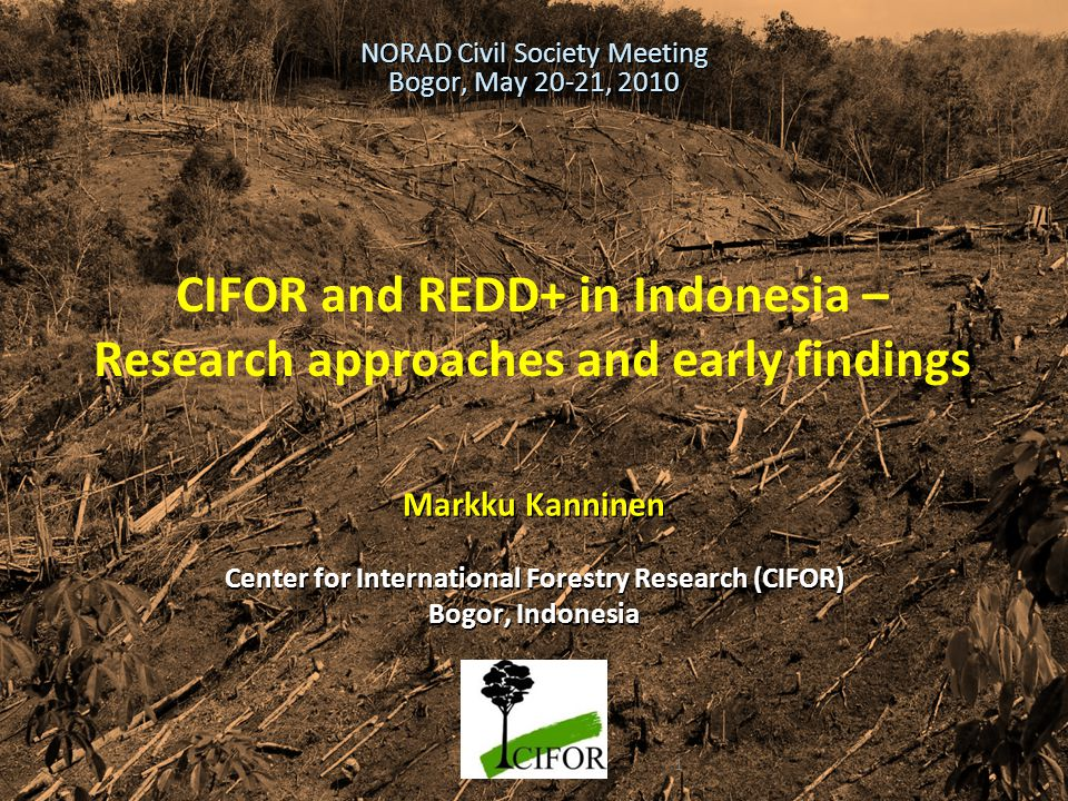 CIFOR and REDD+ in Indonesia – Research approaches and early findings