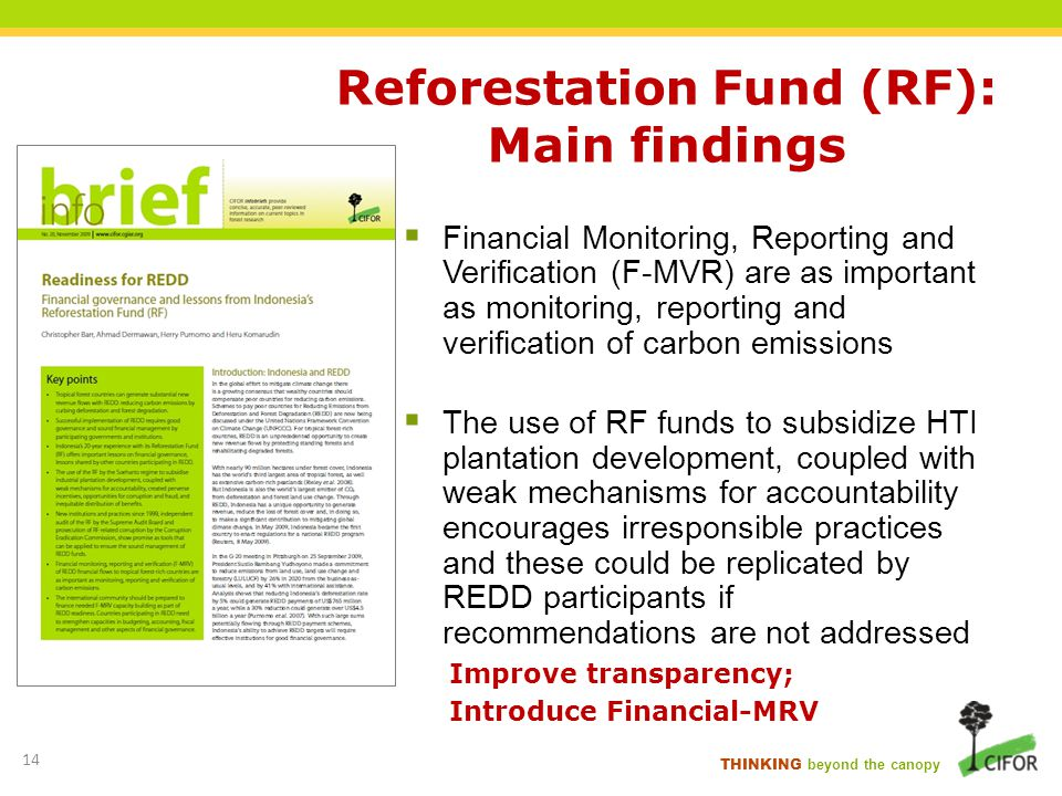 Reforestation Fund (RF): Main findings