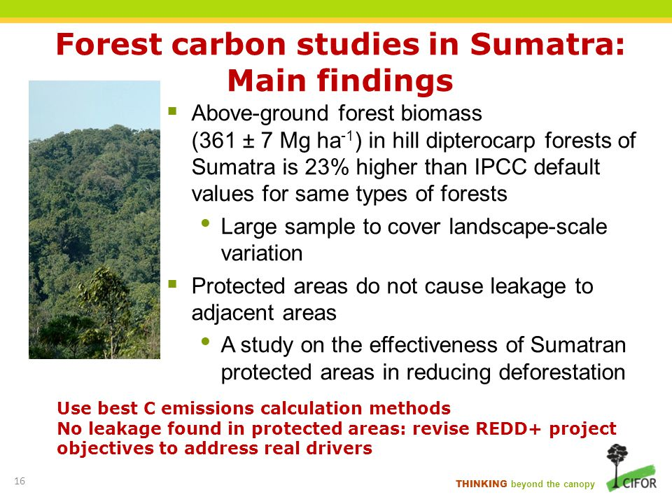 Forest carbon studies in Sumatra: Main findings