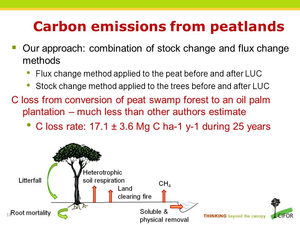 Carbon emissions from peatlands