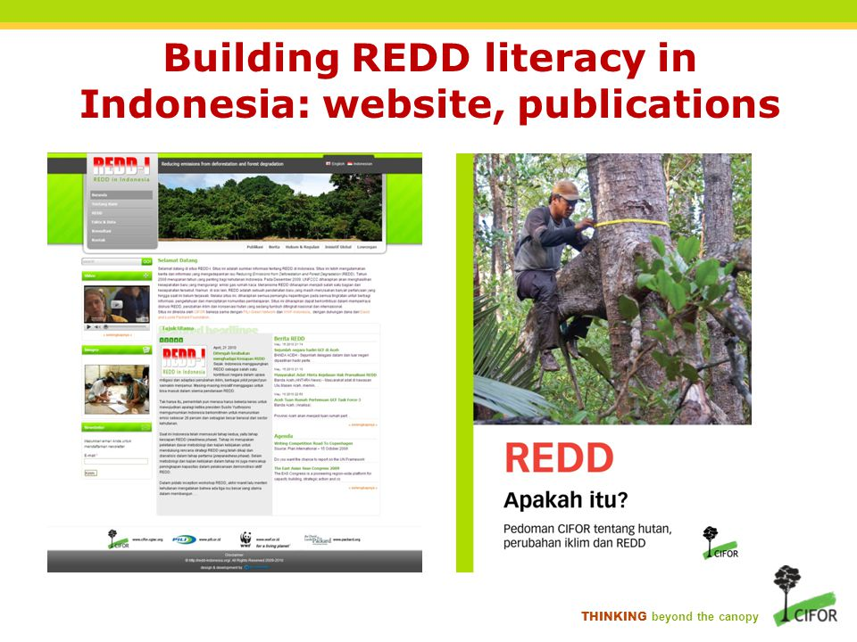 Building REDD literacy in Indonesia: website, publications