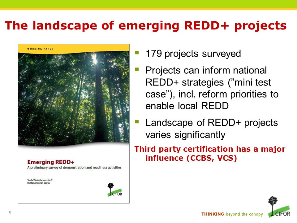 The landscape of emerging REDD+ projects