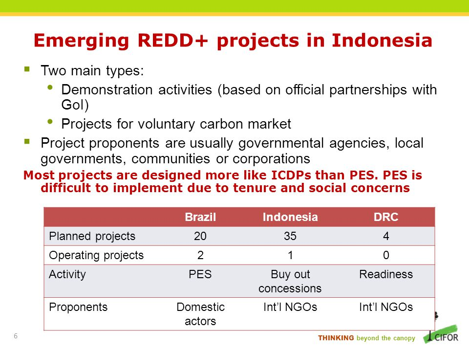 Emerging REDD+ projects in Indonesia