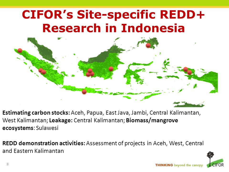 CIFOR's Site-specific REDD+ Research in Indonesia