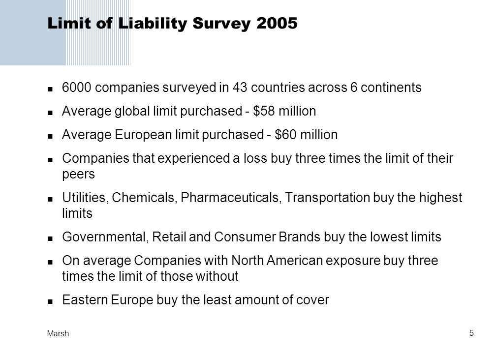 Limit of Liability Survey 2005