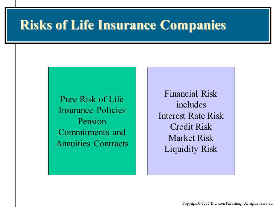 Risks of Life Insurance Companies